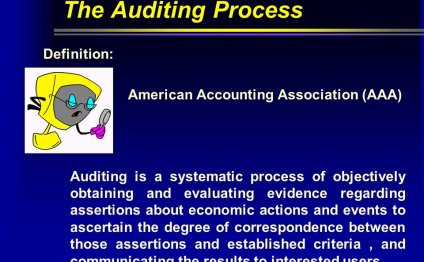The Auditing Process