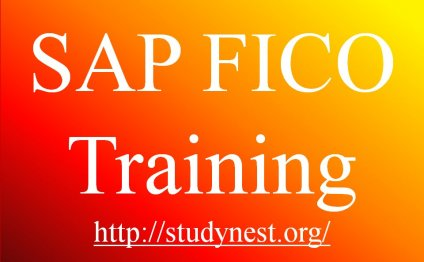 SAP FICO Training - Financial