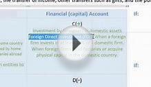 Balance of Payments - the Financial (Capital) Account